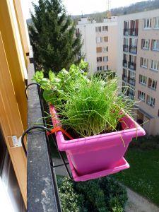 jardinet-3