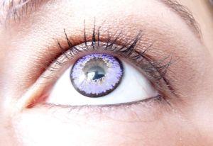 lentilles - 2
