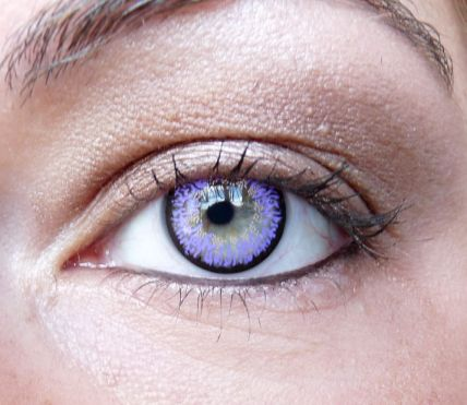 lentilles - 8