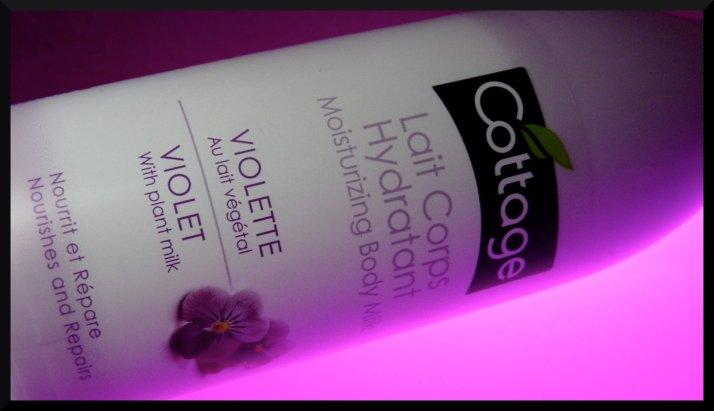coviolette - 7