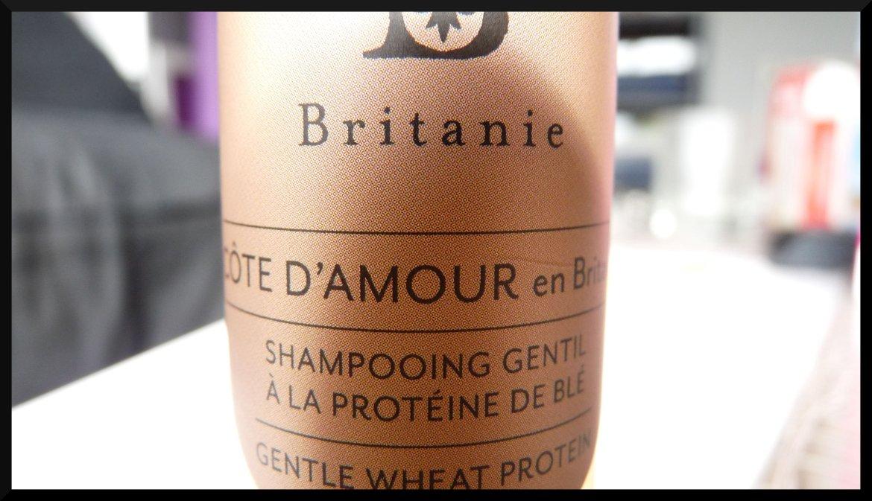 Britanie shampooing gentil blé