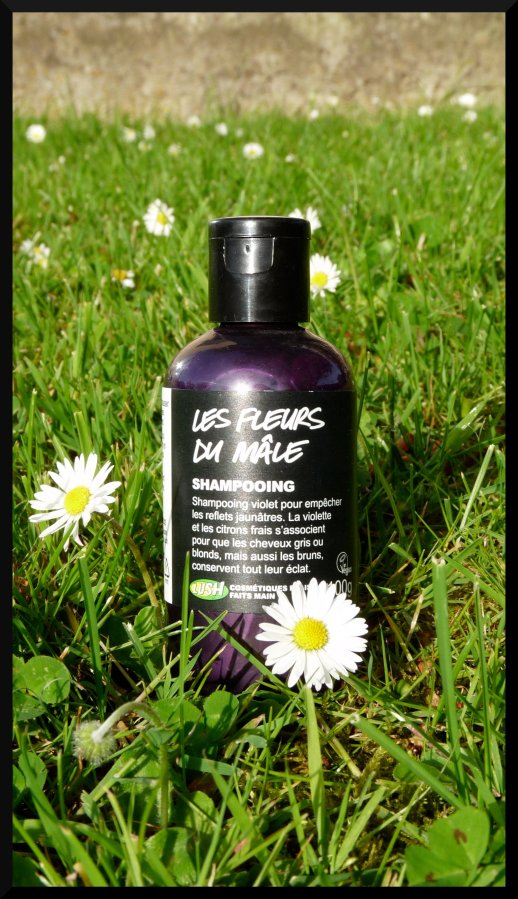 Lush fleurs du mâle shampooing