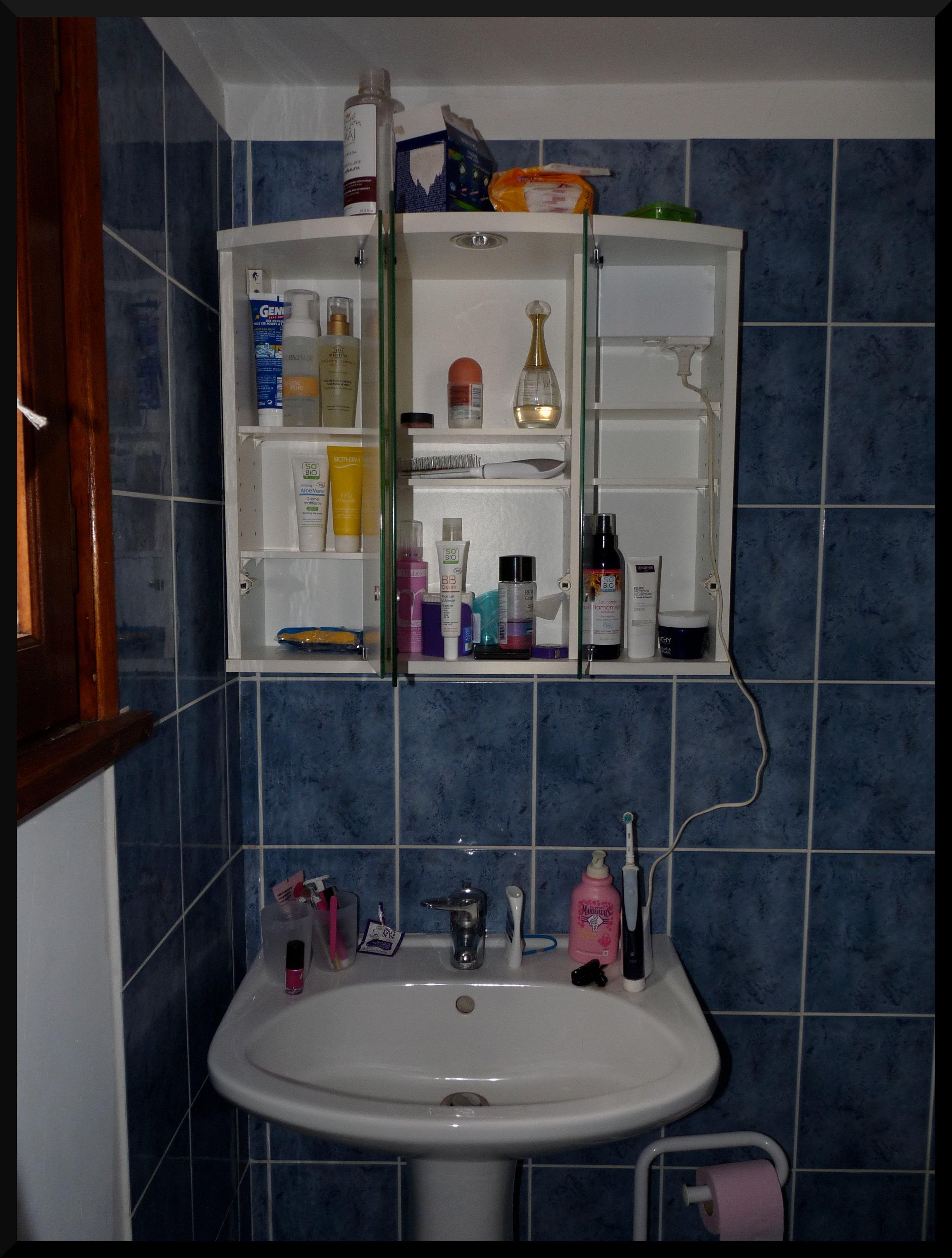 Déjà installés dans la salle de bains ( rouleau de PQ en guest )